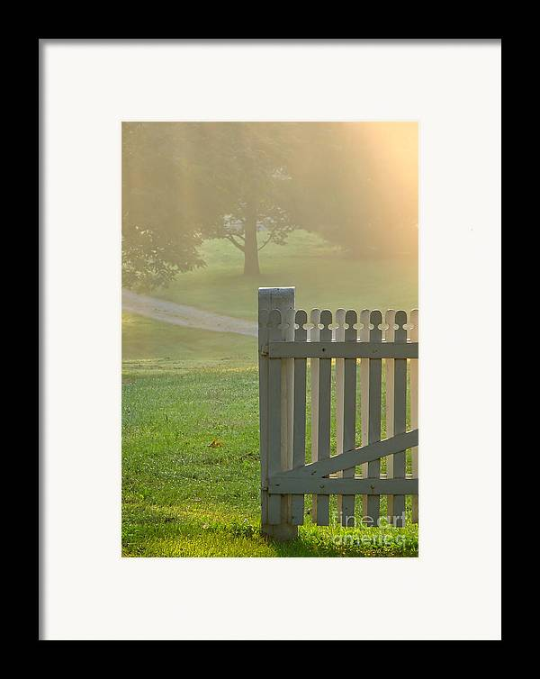 Garden Framed Print featuring the photograph Gate In Morning Fog by Olivier Le Queinec
