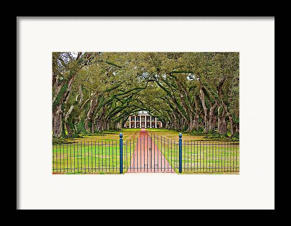 Oak Alley Plantation Framed Print featuring the photograph Gateway To The Old South by Steve Harrington
