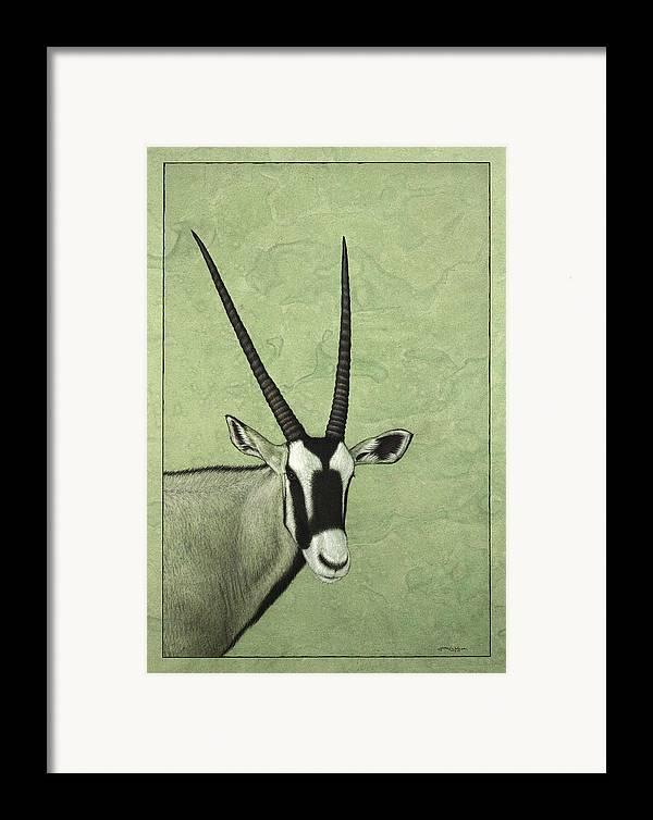 Gemsbok Framed Print featuring the painting Gemsbok by James W Johnson