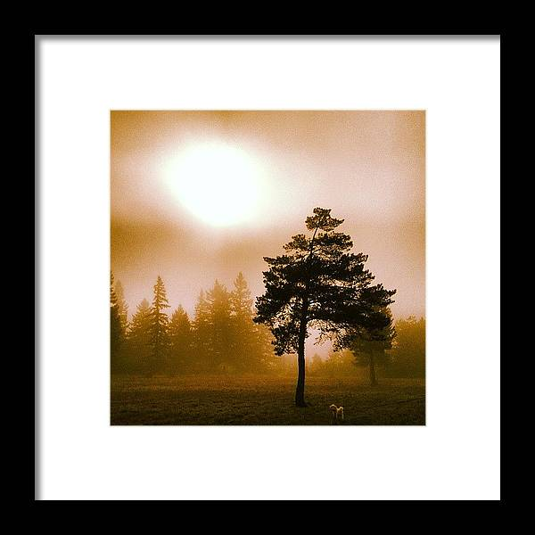 Beautiful Framed Print featuring the photograph Morning Light by Blenda Studio