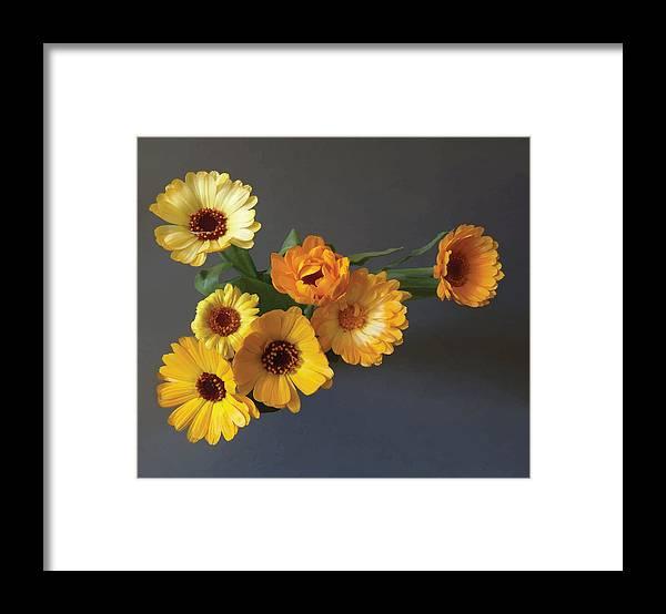 Arrangement Framed Print featuring the digital art Gerbera bouquet by Adrian Bud