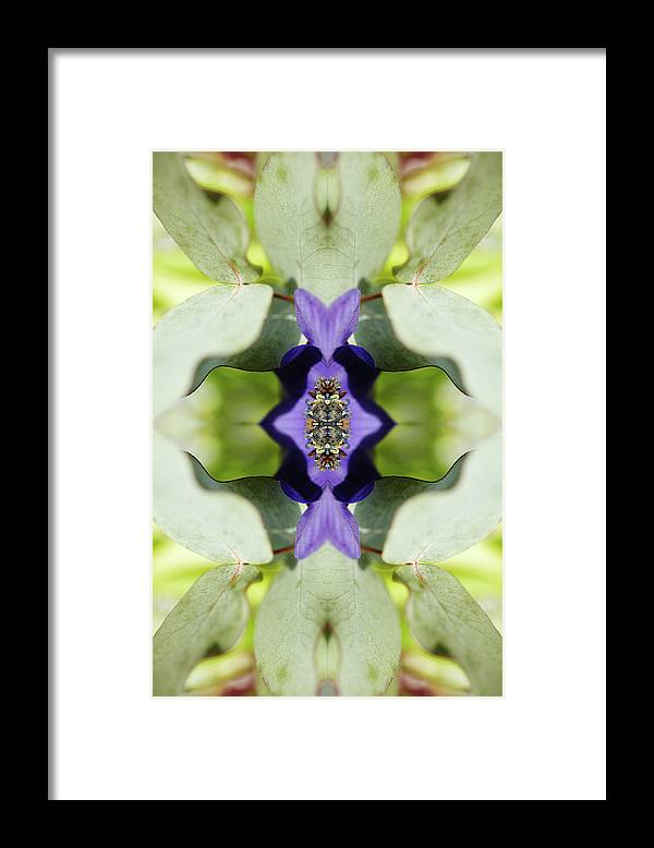 Tranquility Framed Print featuring the photograph Gerbera Flower by Silvia Otte