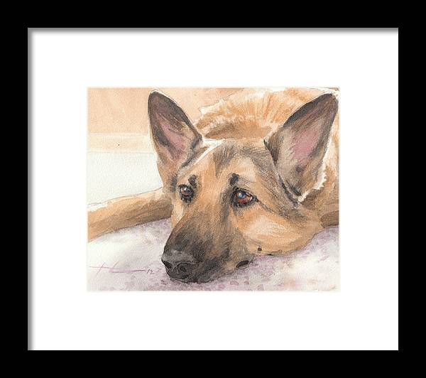 <a Href=http://miketheuer.com Target =_blank>www.miketheuer.com</a> German Shepherd Laying Watercolor Portrait Framed Print featuring the drawing German Shepherd Laying Watercolor Portrait by Mike Theuer