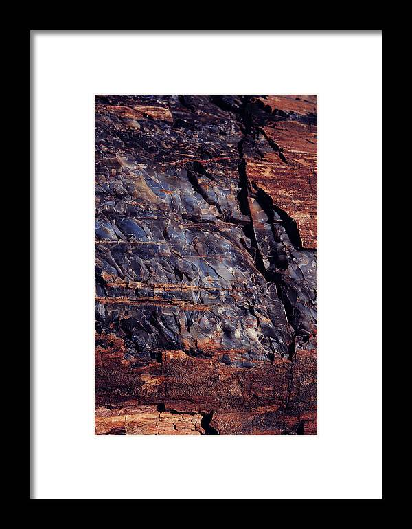 Petrified Forest National Park Framed Print featuring the photograph Glimmer Through Time by Kate Livingston