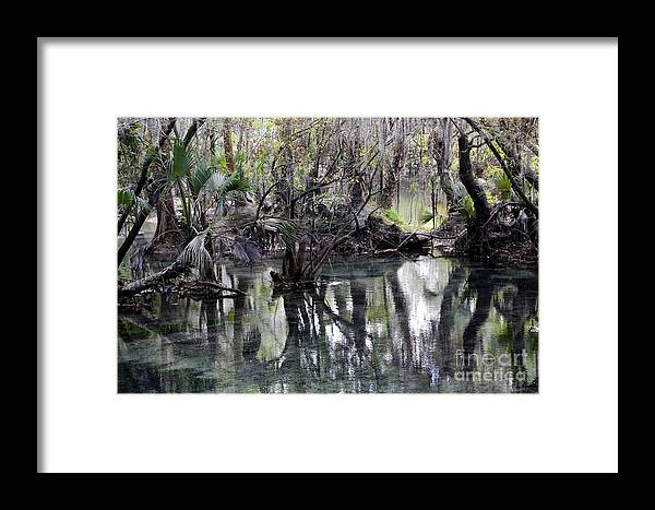 Fresh Water Springs Framed Print featuring the photograph Going Back In Time by Carol Groenen