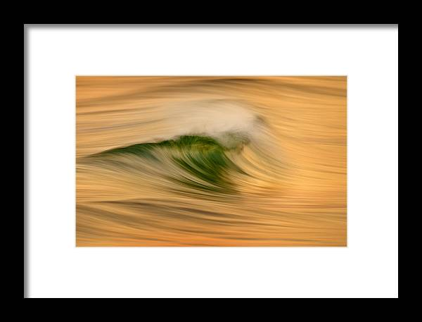 Orias Framed Print featuring the photograph Gold And Green C6j4244 by David Orias