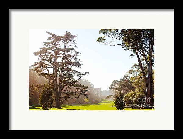 San Francisco Images Framed Print featuring the photograph Golden Gate Park San Francisco by Artist and Photographer Laura Wrede