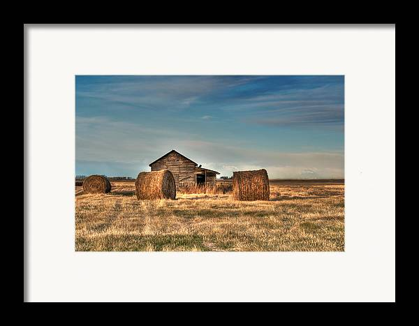 Texture Framed Print featuring the photograph Golden Hay by Lisa Knechtel
