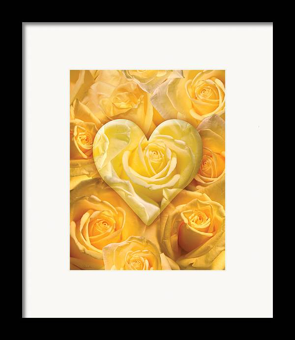 Alixandra Mullins Framed Print featuring the photograph Golden Heart Of Roses by Alixandra Mullins