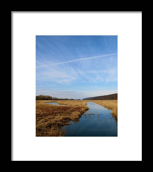 Marsh Framed Print featuring the photograph Golden January by Azthet Photography