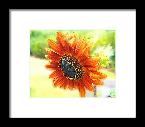 Amber Framed Print featuring the digital art Golden Sunflower by Lizi Beard-Ward