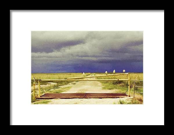 Landscape Framed Print featuring the photograph Got Any Plans? by Audreen Gieger