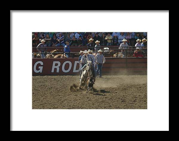 Calf Roping Framed Print featuring the photograph Got Em by Jeff Swan