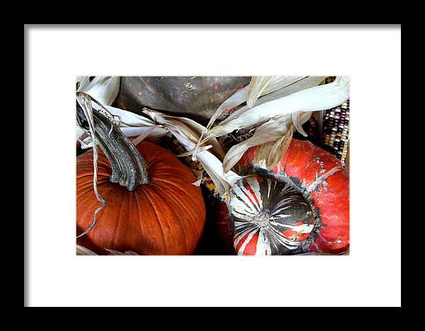 Laurette Escobar Framed Print featuring the photograph Gourd Geous George by Laurette Escobar