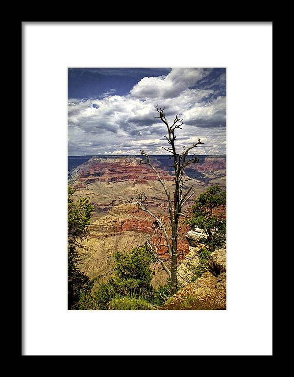 Art Framed Print featuring the photograph Grand Canyon View From The South Rim by Randall Nyhof