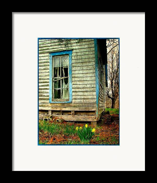 Daffodyls Framed Print featuring the photograph Grandma's Daffodyls by Julie Dant