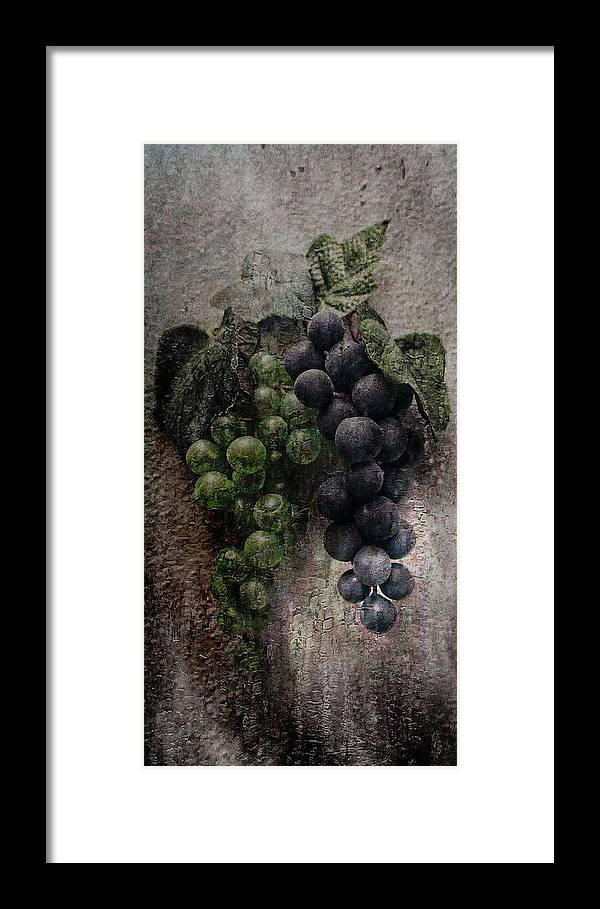 Grapes Framed Print featuring the photograph Off The Vine by Aaron Berg