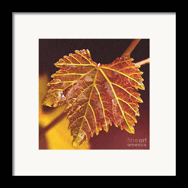 Red Grape Leaf Framed Print featuring the painting Grapevine In Fall by Artist and Photographer Laura Wrede