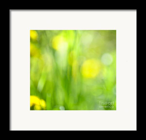 Green Framed Print featuring the photograph Green Grass With Yellow Flowers Abstract by Elena Elisseeva