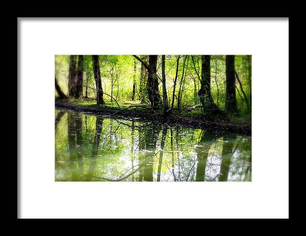 Water Framed Print featuring the photograph Green Shadows by Valentino Visentini