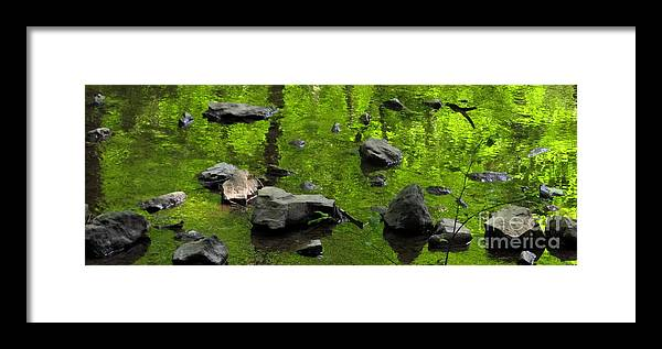 Green Stream Reflections Waterscapes Streamscapes Green Creek Green Brook Forest Reflections Woodland Stream Water Reflection Waterscapes Aquascapes Water Art H2o Framed Print featuring the photograph Green Stream by Joshua Bales