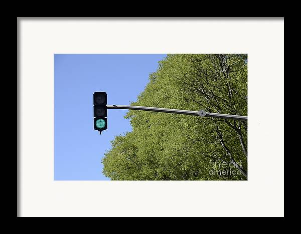 Authority Framed Print featuring the photograph Green Traffic Light By Trees by Sami Sarkis