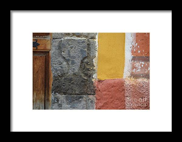 Grey Madder Framed Print featuring the photograph Grey Madder by Brian Boyle