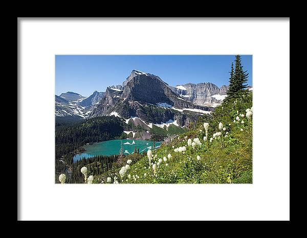 Beargrass Framed Print featuring the photograph Grinnell Lake With Beargrass by Jack Bell