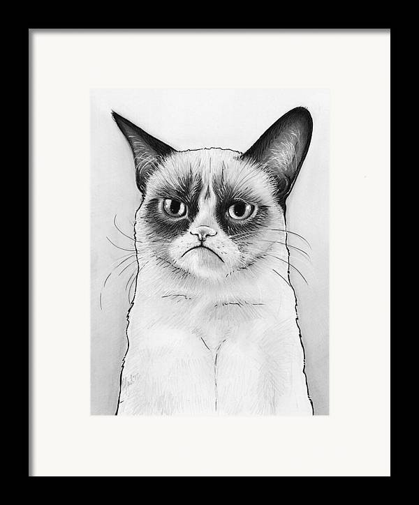 Grumpy Cat Framed Print featuring the drawing Grumpy Cat Portrait by Olga Shvartsur