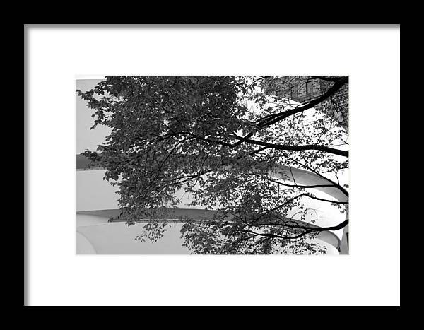 Scenic Framed Print featuring the photograph Guggenheim And Trees In Black And White by Rob Hans