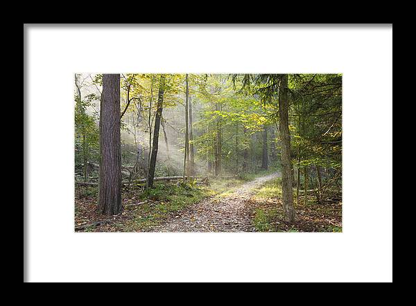 Cuyahoga Valley National Park Framed Print featuring the photograph Guided Trail by Jeffrey Gibson