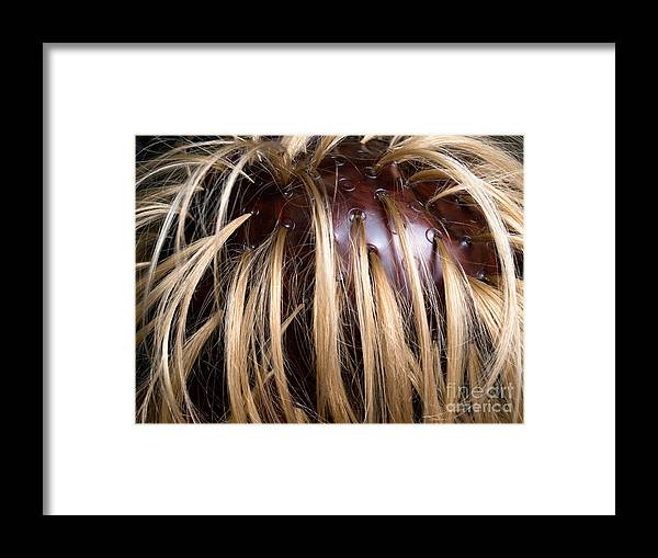 Roach Framed Print featuring the photograph Hair Coloring by Sinisa Botas