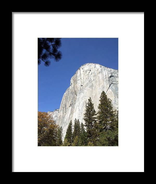 Half Framed Print featuring the photograph Half Dome Yosemite by Richard Reeve
