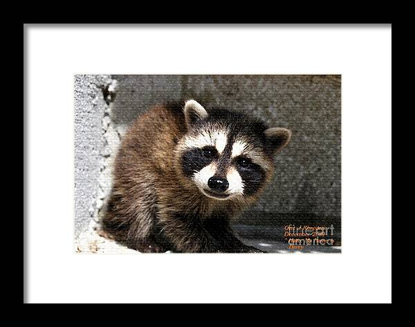 Art Framed Print featuring the painting Hallo My Name Is Henry by Gert J Rheeders
