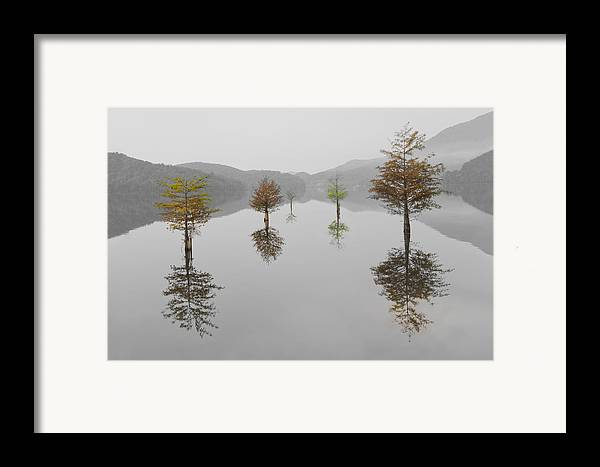 Appalachia Framed Print featuring the photograph Hanging Garden by Debra and Dave Vanderlaan