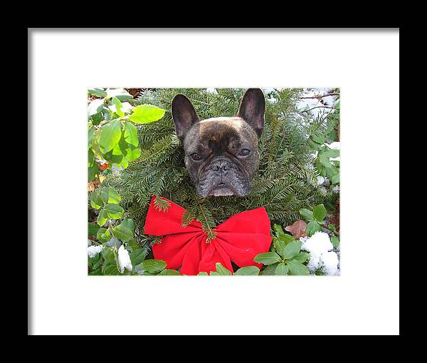 Holiday Framed Print featuring the photograph Happy Holidays by Mia Capretta