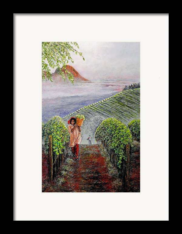 Vineyard Framed Print featuring the painting Harvest At Dawn by Michael Durst
