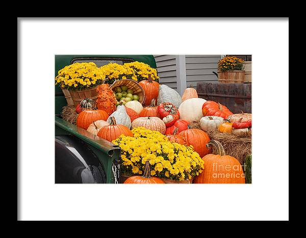 Vermont Country Store Framed Print featuring the photograph Harvest Display At The Vermont Country Store by Charles Kozierok