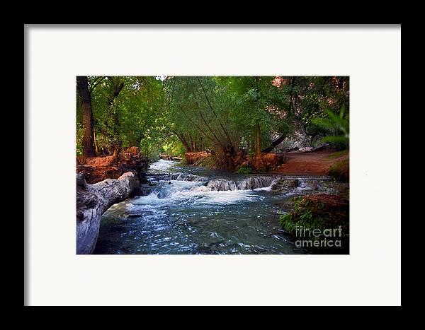 Arizona Framed Print featuring the photograph Havasu Creek by Kathy McClure