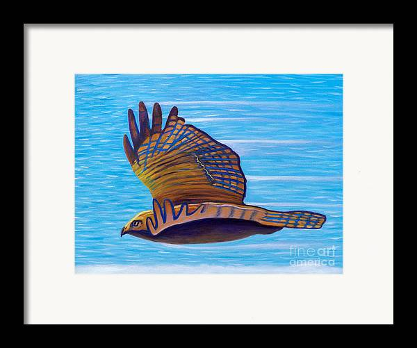Hawk Framed Print featuring the painting Hawk Speed by Brian Commerford