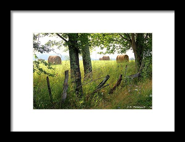 Hay Bales Framed Print featuring the photograph Hay Bales by Carolyn Postelwait