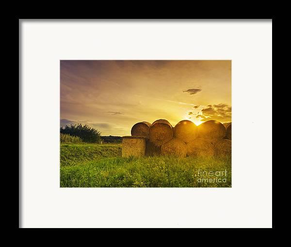 Hay Framed Print featuring the pyrography Hay Bales by Jelena Jovanovic