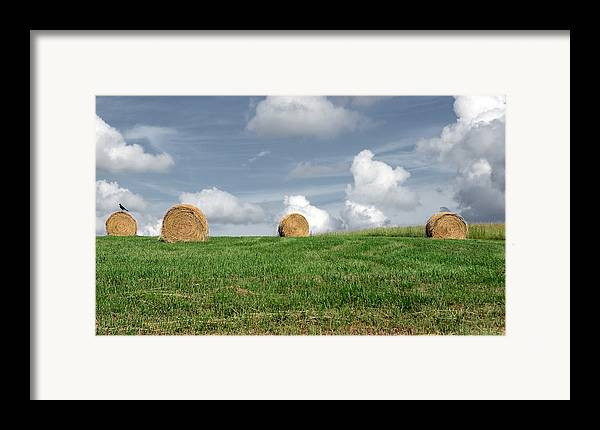 Countryside Framed Print featuring the photograph Hay Bales by Steven Michael
