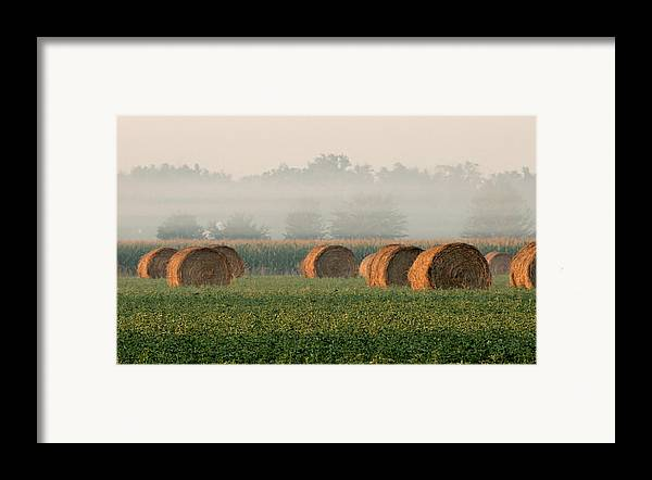 Haybale Framed Print featuring the photograph Haybales by Sarah Boyd