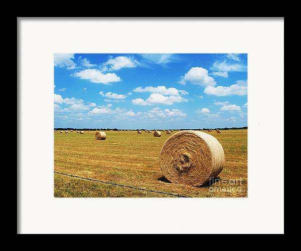 Photography Framed Print featuring the photograph Hayfield by Venus