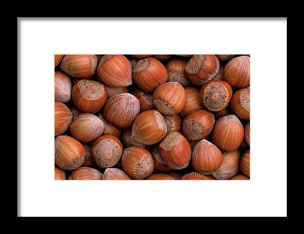 Mp Framed Print featuring the photograph Hazelnuts by Duncan Usher