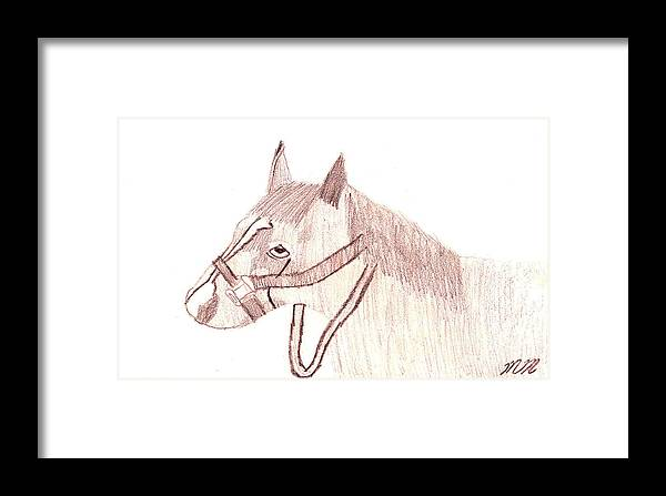Horse Framed Print featuring the drawing Head Of A Horse by Marissa McAlister