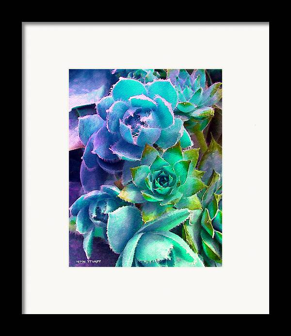 Hens And Chicks Photography Framed Print featuring the photograph Hens And Chicks Series - Deck Blues by Moon Stumpp