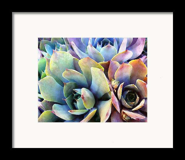 Hens And Chicks Photography Framed Print featuring the painting Hens And Chicks Series - Soft Tints by Moon Stumpp