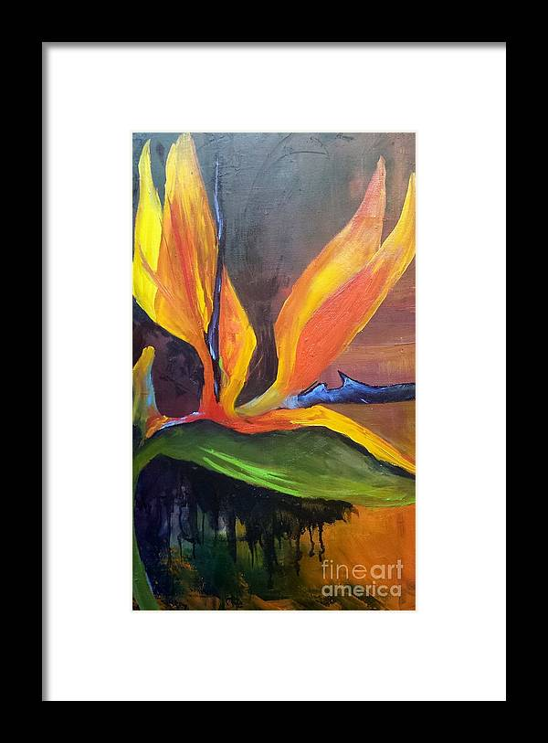 Bird Of Paradise Framed Print featuring the painting Here I Am Bird of Paradise by Barbara Haviland